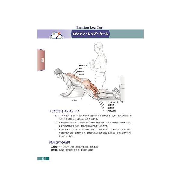 自重筋力トレーニングアナトミィの紹介画像5