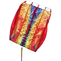 In the Breeze Tie Dye Red 5.0 Air Foil Kite おもちゃ [並行輸入品]
