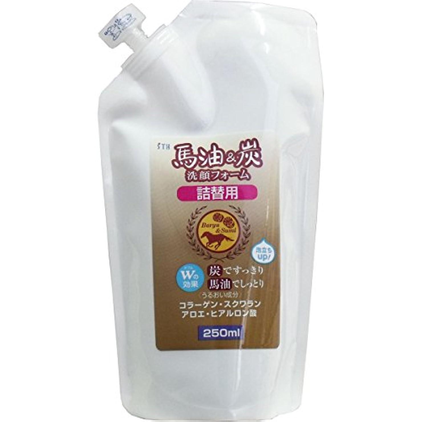 資格栄光の解凍する、雪解け、霜解け馬油&炭洗顔フォーム【詰替用250ml】×2袋