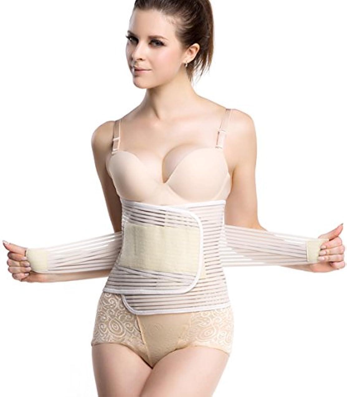 [アイシレ] 腰サポーター 薄型 腰痛ベルト 腰椎保護 通気性抜群 コルセット 男女兼用 ベージュ L