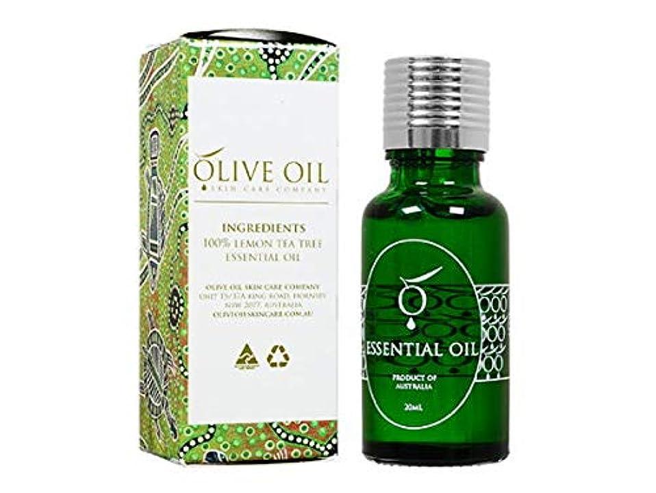 ナンセンス流す払い戻しOliveOil エッセンシャルオイル?レモンティーツリー 20ml (OliveOil) Essential Oil (Lemon Tea Tree) Made in Australia