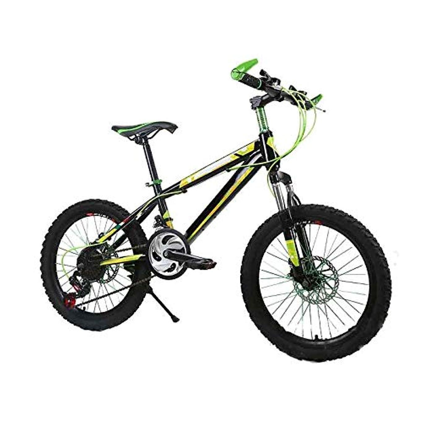 スワップすり減る鉱夫XIAOYU 1台の自転車減衰大人の男性と女性のマウンテンバイククロスカントリーの旅光と可変速 (Color : Green)