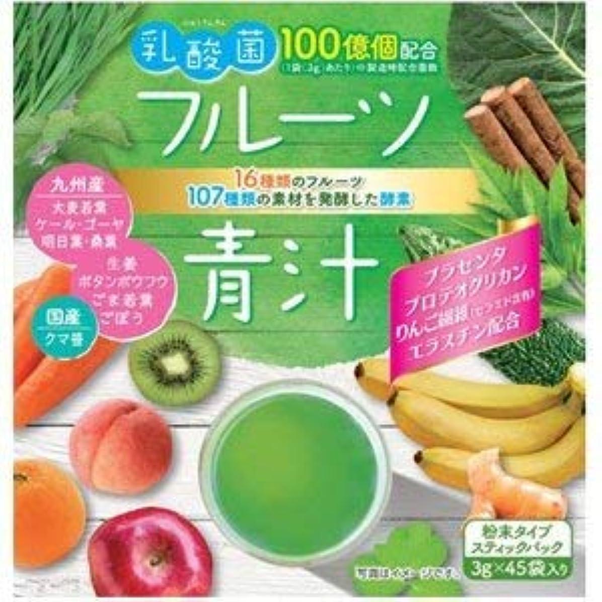 促進する送料ソケット新日配薬品 乳酸菌入りフルーツ青汁 3g×45包×2個