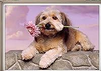 Xiyuyuan 新しい3dフルダイヤモンドダイヤモンド刺繍花かわいい犬の寝室のリビングルーム樹脂ダイヤモンドダイヤモンド絵画スティックドリル