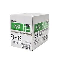 【断裁加工品】大王製紙 ダイオーマルチカラーペーパー(色付きコピー用紙) B6サイズ 5000枚 若草