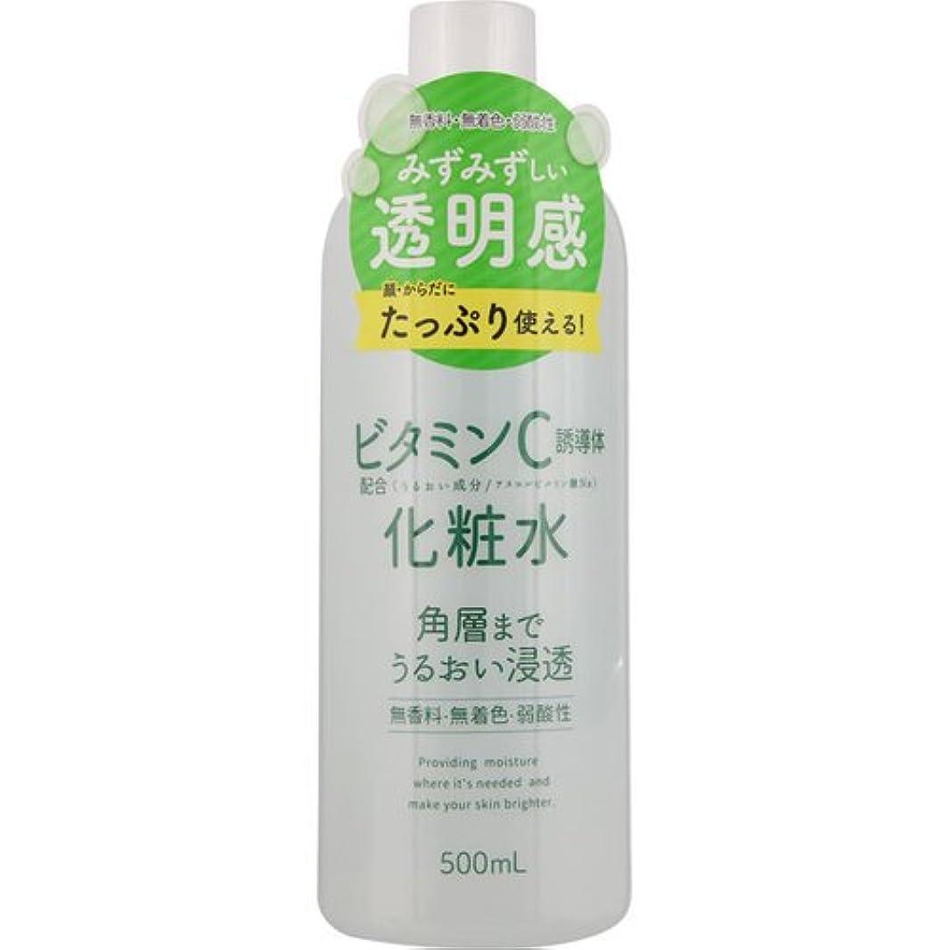 天窓悪夢アンケートスキンローション ビタミンC 500mL