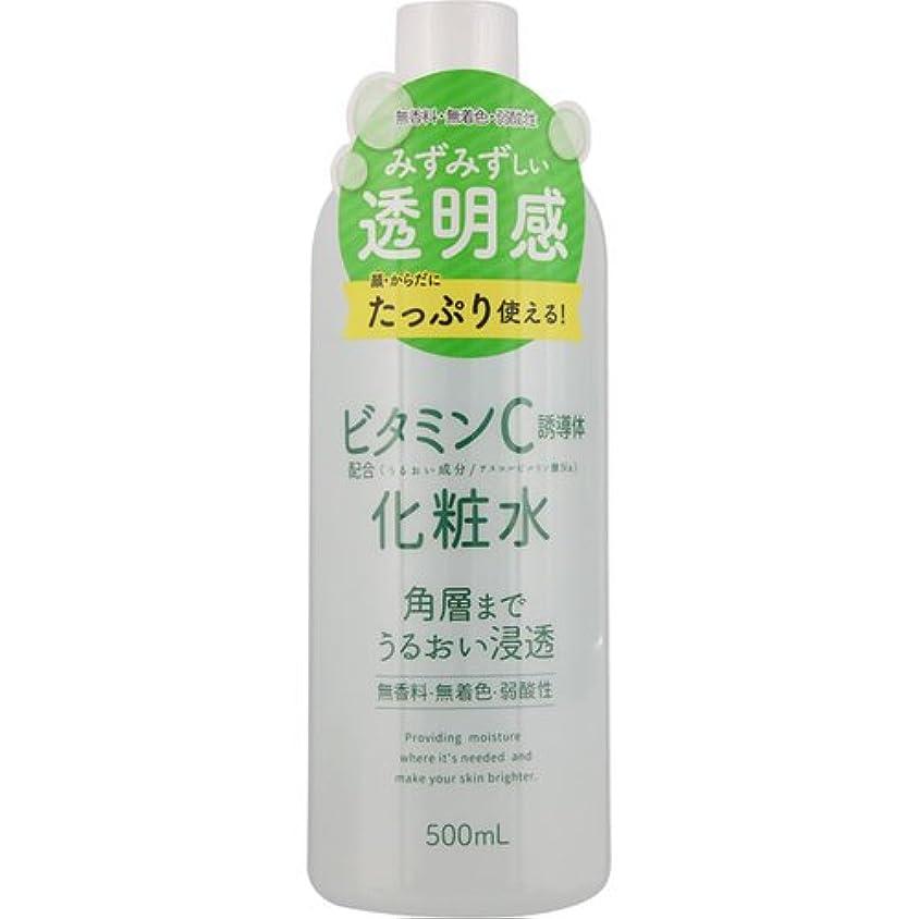 覚醒地下室腹スキンローション ビタミンC 500mL