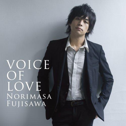 VOICE OF LOVE ~愛の力~(DVD付)