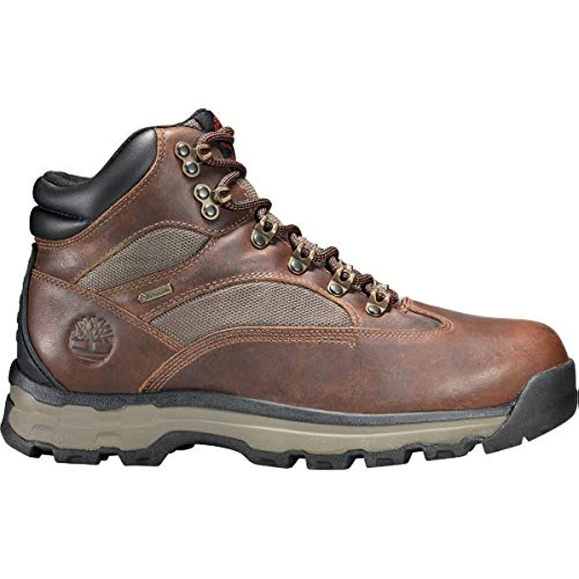 理容師人工的な国民[ティンバーランド] メンズ ハイキング Chocorua Trail 2 Mid GTX Boot [並行輸入品]
