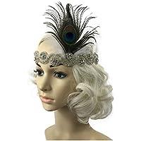 Jelinda Women's Vintage Flapper Headbands Gatsby Feather Headpieces