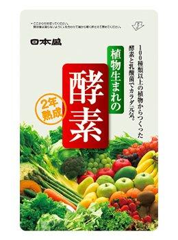 日本盛 植物生まれの酵素 62粒