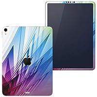 igsticker iPad Pro 11 inch インチ 対応 apple iPad Pro11 シール アップル アイパッド A1934 A1979 A1980 A2013 iPadPro11 全面スキンシール フル 背面 側面 正面 液晶 タブレットケース ステッカー タブレット 保護シール 人気 シンプル カラフル 002055