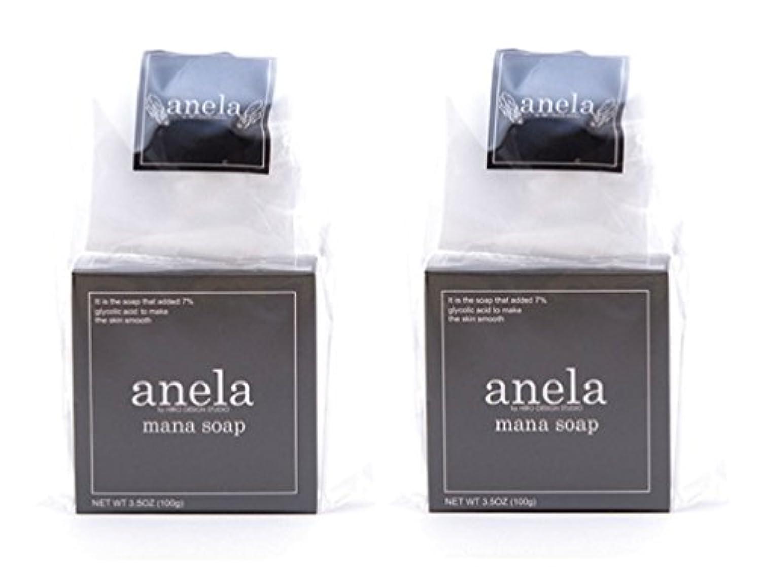 香り味芸術的アネラ マナソープ 100g×2個セット