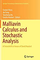 Malliavin Calculus and Stochastic Analysis: A Festschrift in Honor of David Nualart (Springer Proceedings in Mathematics & Statistics)