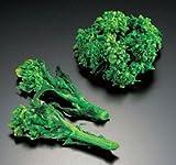 国産冷凍菜の花500g(2-5月)
