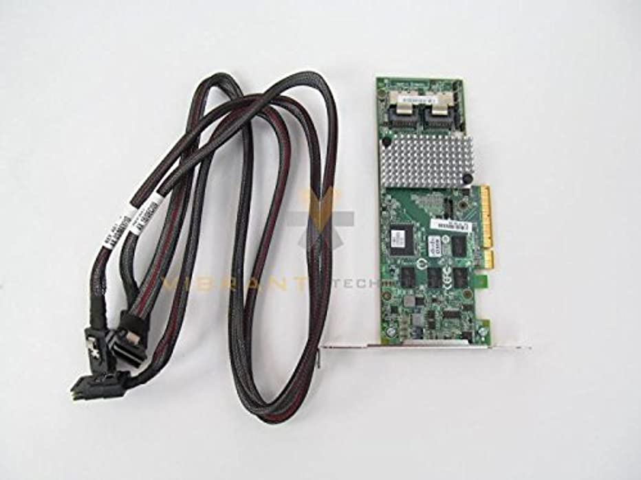 症候群しばしば打撃Cisco r2 X x-pl003 UCS LSI MegaRAID 9261 – 8i