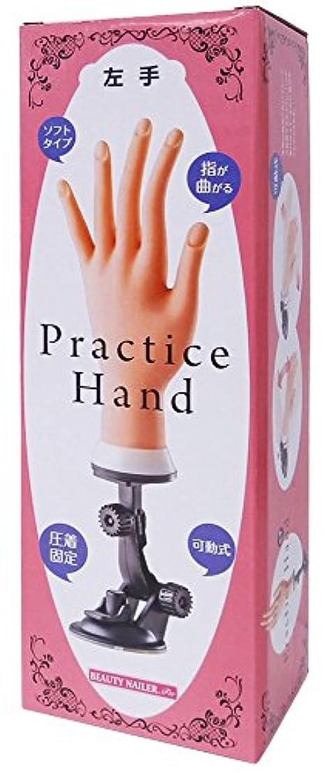 資格情報インスタンス定義ビューティーネイラー プラクティスハンド 左手 PH-2