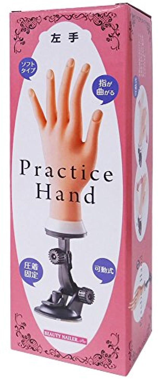 局痛み集計ビューティーネイラー プラクティスハンド 左手 PH-2