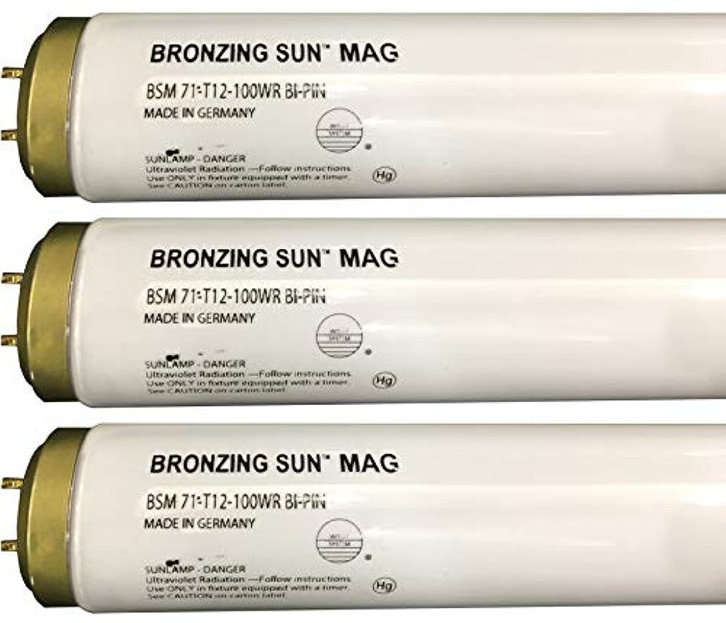 飲食店平手打ちたらいWolff Bronzing Sun Magnum fr71 Ho 100 W BiピンReflector Tanningランプ T12 27248