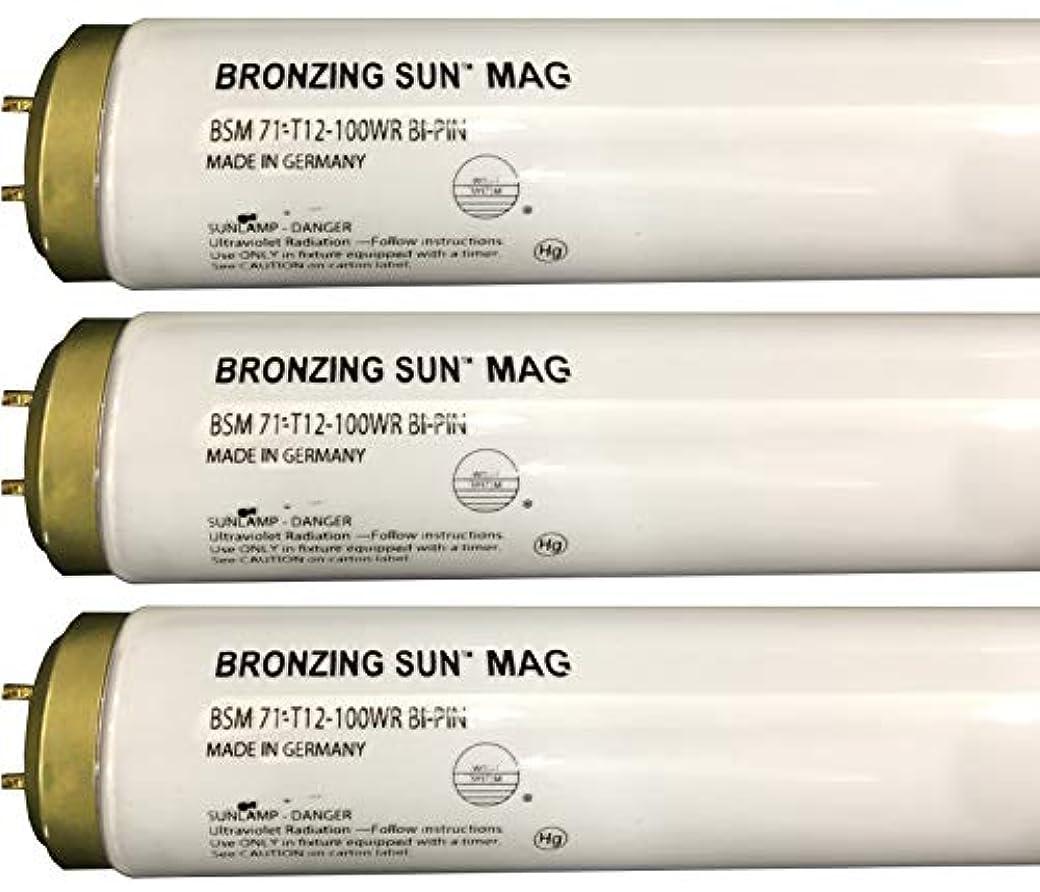 道路チャップ実現可能性Wolff Bronzing Sun Magnum fr71 Ho 100 W BiピンReflector Tanningランプ T12 27248