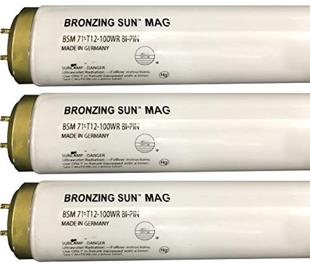 三覆す水曜日Wolff Bronzing Sun Magnum fr71 Ho 100 W BiピンReflector Tanningランプ T12 27248
