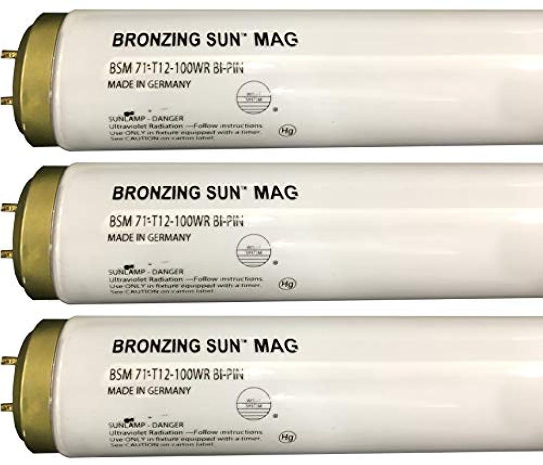 ジョットディボンドン出口海洋のWolff Bronzing Sun Magnum fr71 Ho 100 W BiピンReflector Tanningランプ T12 27248
