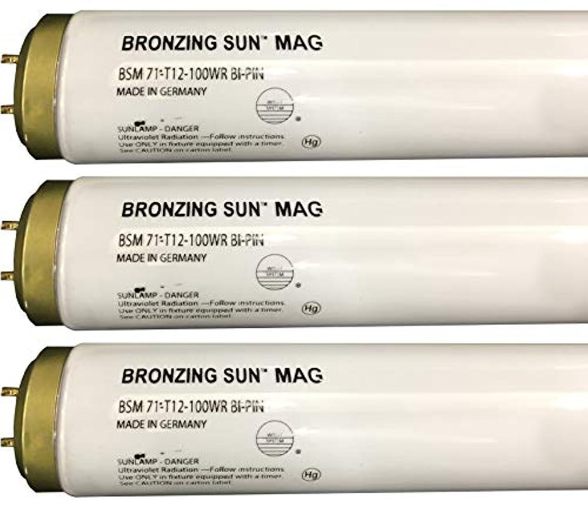 乱闘命令的バケットWolff Bronzing Sun Magnum fr71 Ho 100 W BiピンReflector Tanningランプ T12 27248