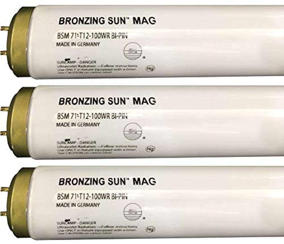 再開運命的な計算可能Wolff Bronzing Sun Magnum fr71 Ho 100 W BiピンReflector Tanningランプ T12 27248