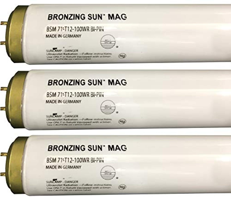 病院突き刺す住所Wolff Bronzing Sun Magnum fr71 Ho 100 W BiピンReflector Tanningランプ T12 27248