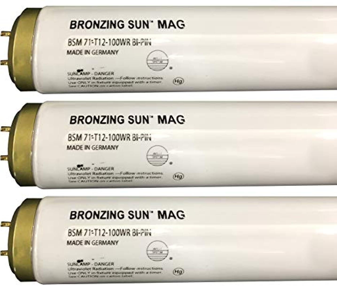 評価する田舎エキサイティングWolff Bronzing Sun Magnum fr71 Ho 100 W BiピンReflector Tanningランプ T12 27248