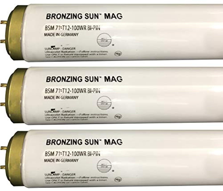 あご日記少なくともWolff Bronzing Sun Magnum fr71 Ho 100 W BiピンReflector Tanningランプ T12 27248