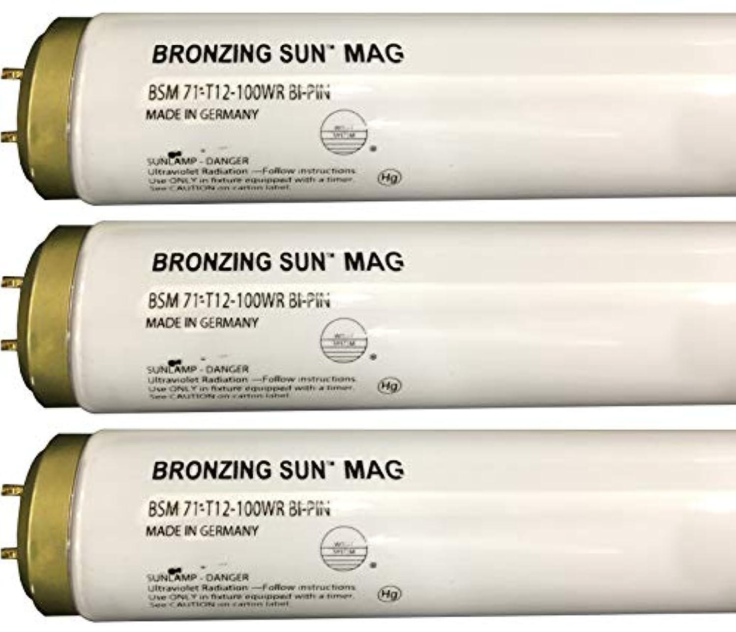 襲撃最大の入学するWolff Bronzing Sun Magnum fr71 Ho 100 W BiピンReflector Tanningランプ T12 27248