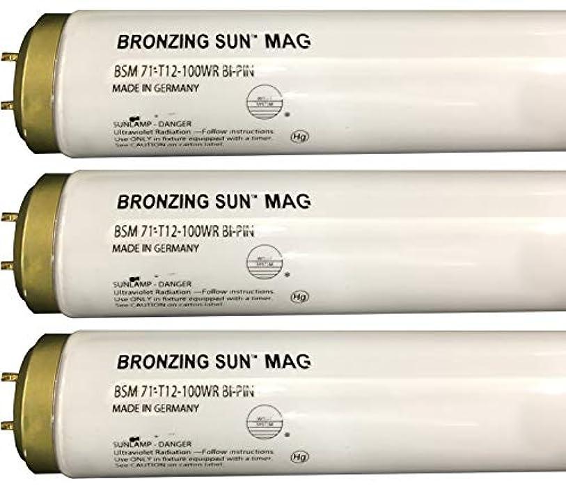 慣れる外観主導権Wolff Bronzing Sun Magnum fr71 Ho 100 W BiピンReflector Tanningランプ T12 27248