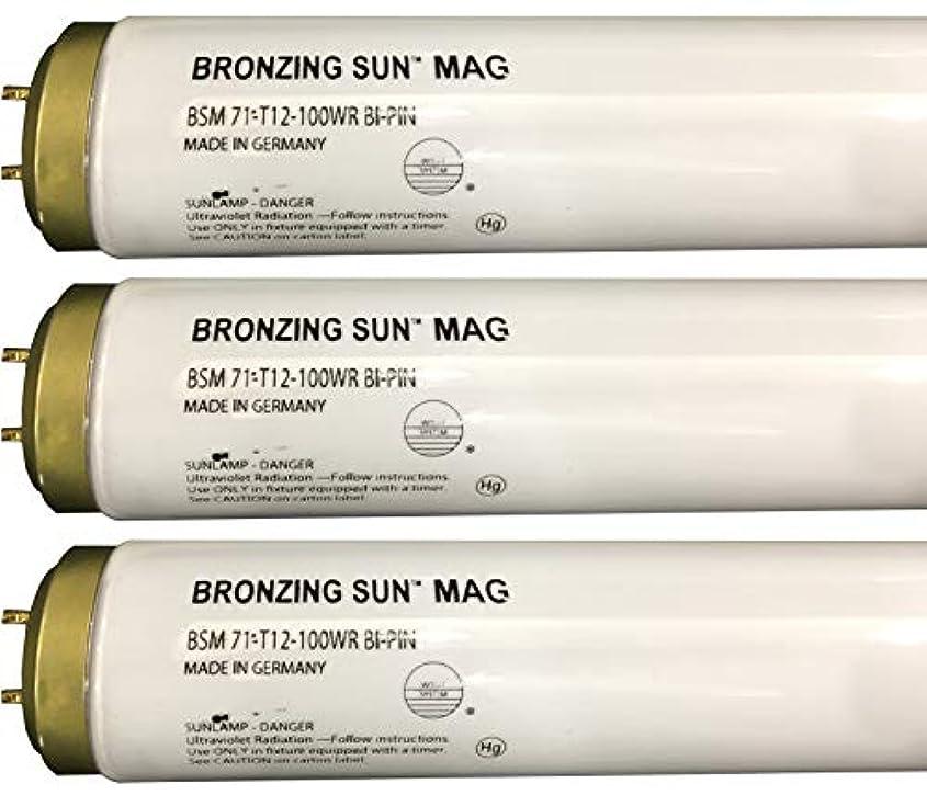 絶対に哲学者組立Wolff Bronzing Sun Magnum fr71 Ho 100 W BiピンReflector Tanningランプ T12 27248