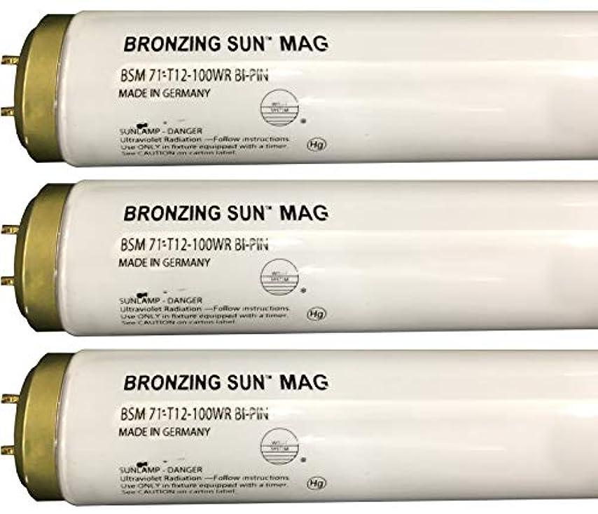 分析的行き当たりばったり子供っぽいWolff Bronzing Sun Magnum fr71 Ho 100 W BiピンReflector Tanningランプ T12 27248