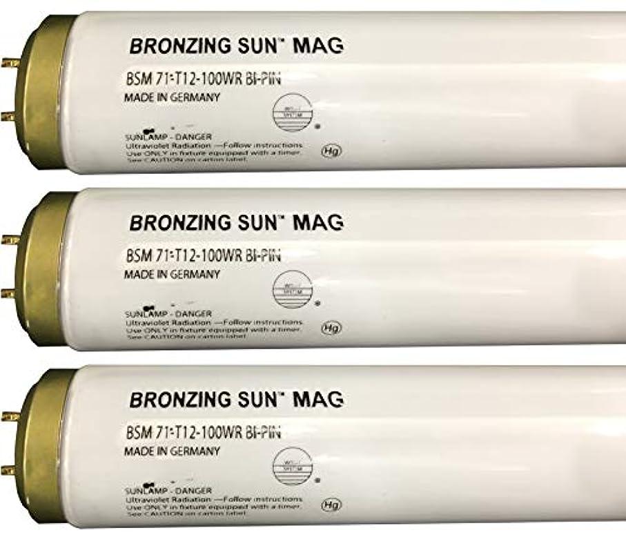 ネクタイ描写エジプトWolff Bronzing Sun Magnum fr71 Ho 100 W BiピンReflector Tanningランプ T12 27248