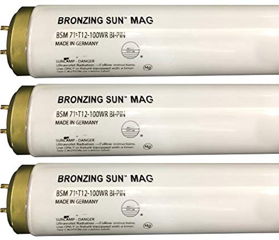 分割責めはっきりとWolff Bronzing Sun Magnum fr71 Ho 100 W BiピンReflector Tanningランプ T12 27248