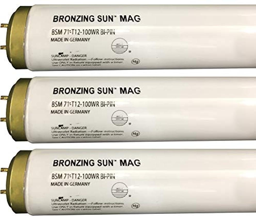 治療八錫Wolff Bronzing Sun Magnum fr71 Ho 100 W BiピンReflector Tanningランプ T12 27248