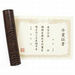 賞状色紙 卒業証書