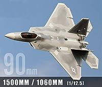 ラジコン ジェット F-22 ラプター Raptor 90mm EDF Jet PNP ダクデットファン 完成機 (90-8s-pnp)
