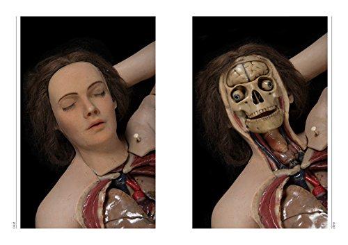 アナトミカル・ヴィーナス 解剖学の美しき人体模型
