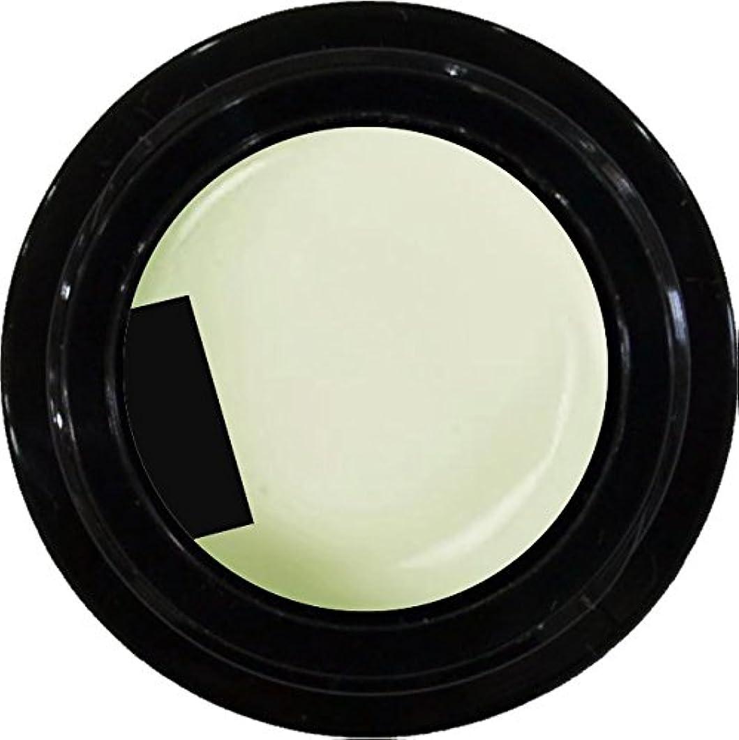 ウェブ十一人気カラージェル enchant color gel M002 BrancheBale 3g/ マットカラージェル M002 ブランシェベール 3グラム