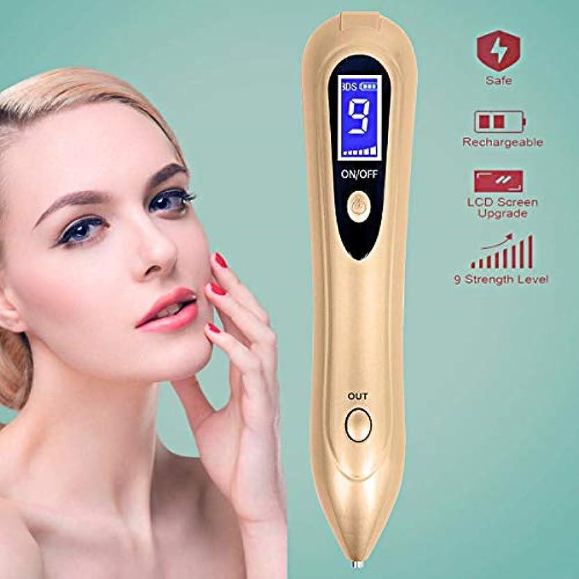 説明好む賛美歌皮膚レーザーそばかすの除去機、肌のラベルを削除するには、LEDのツールとの電気美容ペンポータブル、ダークスポット、そばかす、ほくろやタトゥ安全なUSB充電式の看護を削除します