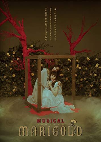 【Amazon.co.jp限定】ミュージカル『マリーゴールド』(2L判ビジュアルシート付き) [DVD]