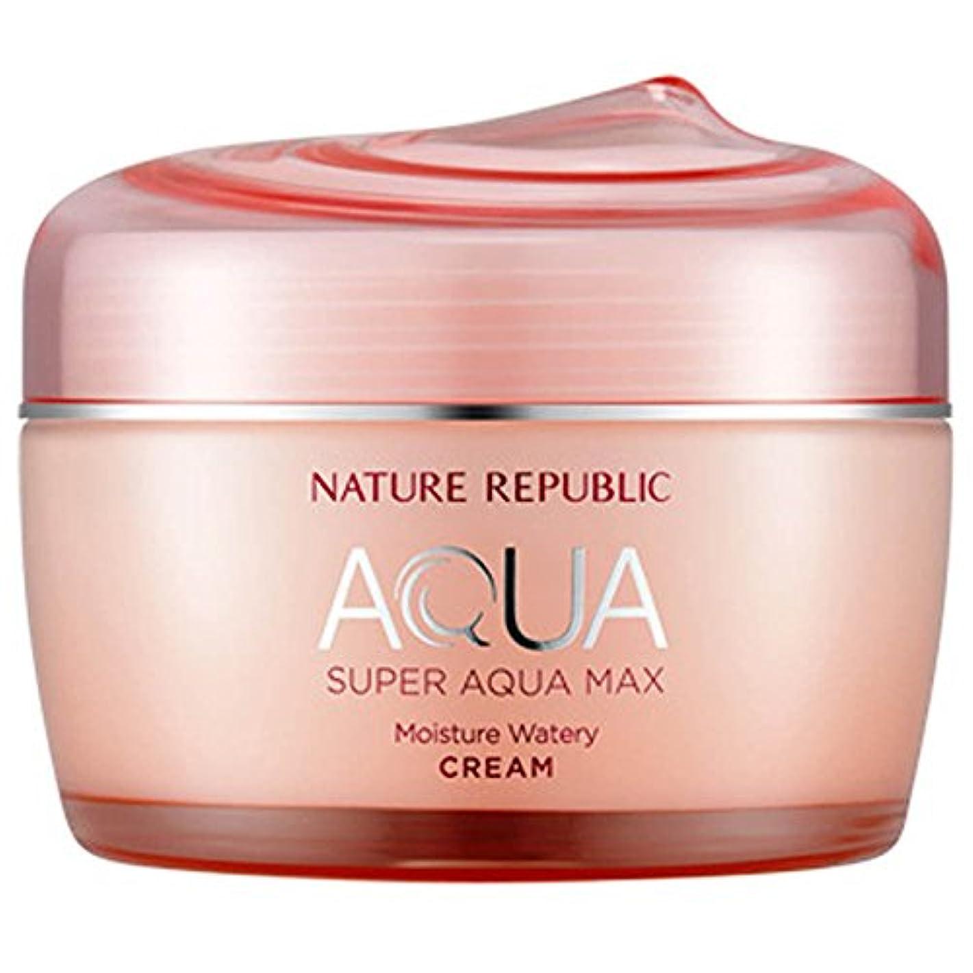 前兆詳細な寛容韓国化粧品NATURE REPUBLICスーパーアクアマックスモイスチャークリーム80ミリリットル水っぽいフェイスクリーム寧アンチリンクルハイド