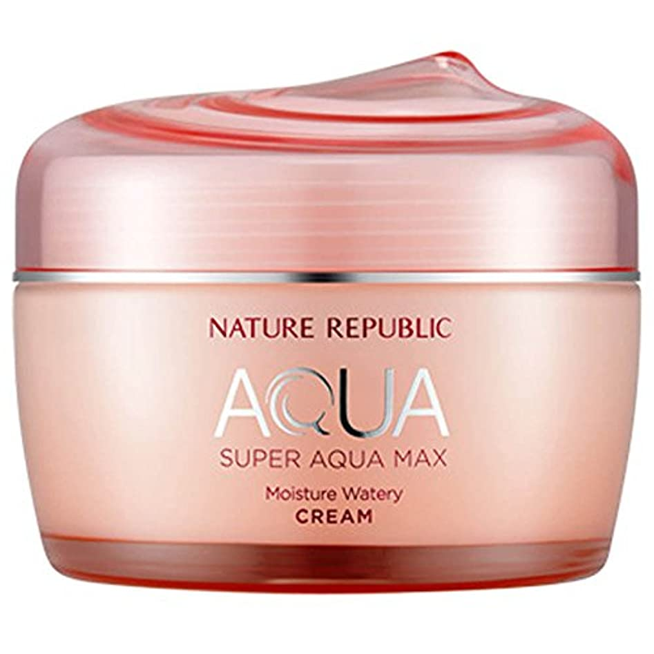 先に手のひらなぜなら韓国化粧品NATURE REPUBLICスーパーアクアマックスモイスチャークリーム80ミリリットル水っぽいフェイスクリーム寧アンチリンクルハイド