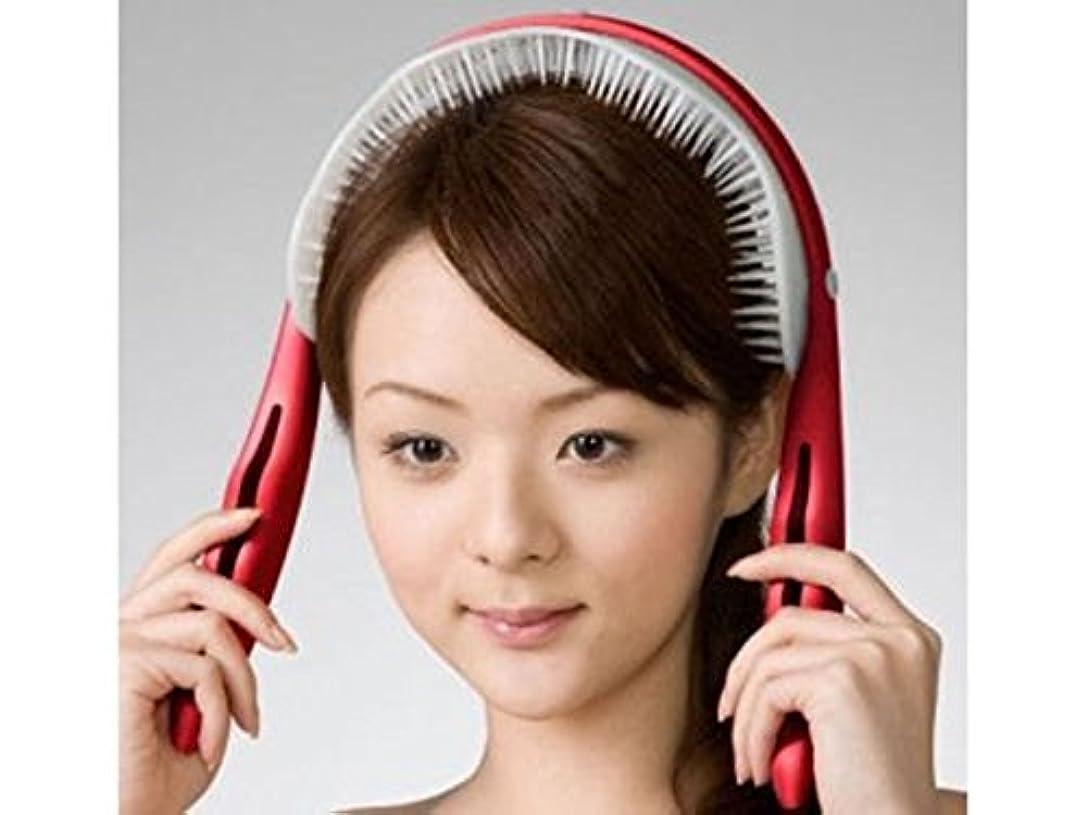 喉頭再生可能シダAKAISHI ヘッドリフレッシャー