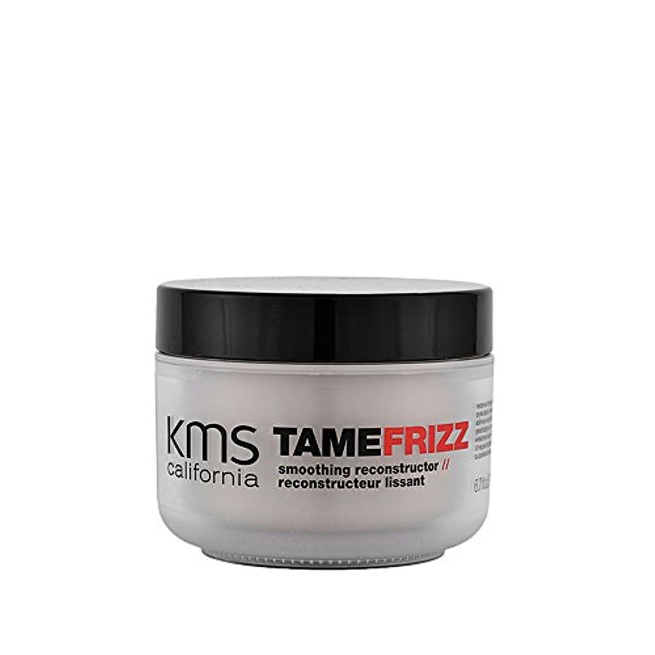 要旨見捨てられた歯痛TameFrizz by KMSカリフォルニアスムージングレコンストラクタ200ml