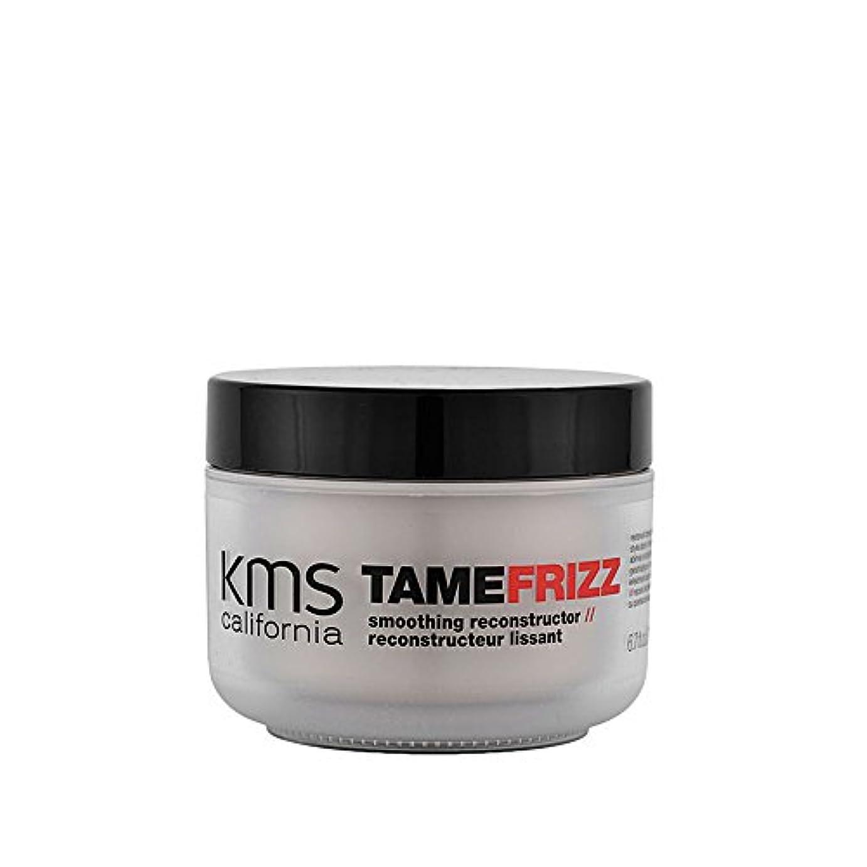 誇りに思うライトニング正当なTameFrizz by KMSカリフォルニアスムージングレコンストラクタ200ml