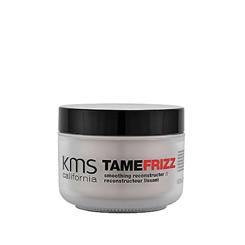 努力周り里親TameFrizz by KMSカリフォルニアスムージングレコンストラクタ200ml